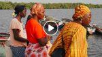 Cette grand-mère Sénégalaise a créé une fédération de femmes avec qui elle reboise la mangrove